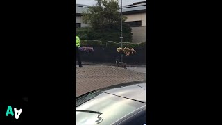 Police Chase Goat on Main Street Roundabout