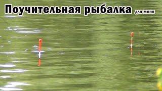 Поучительная рыбалка на карася Насадки для отсечения мелочи