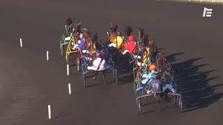Vidéo de la course PMU PRIX DE LA CAMARGUE