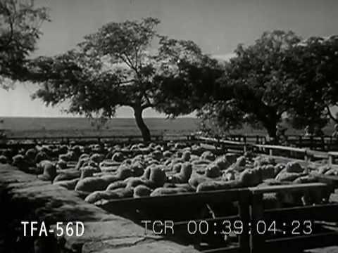 Southern Brazil 1942