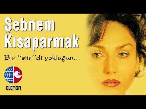 ŞEBNEM&FATİH KISAPARMAK - SENİ SEVİYORUM