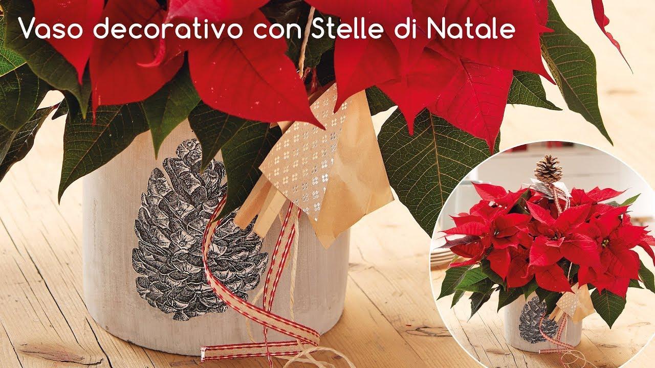 Stelle Di Natale Immagini.Idee Decorative Vaso Con Stelle Di Natale Youtube