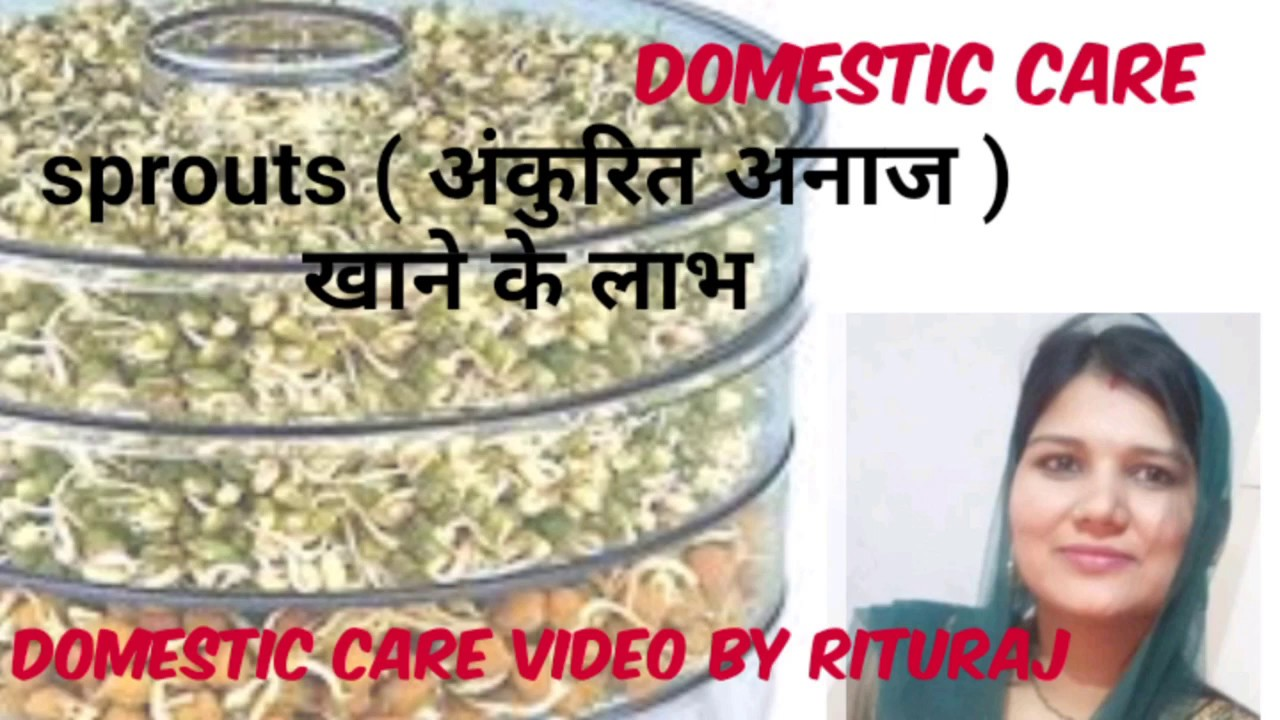 अंकुरित अनाज खाने के फायदे। Benefits of eating sprouted grains, A health tips video by Rituraj