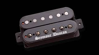 EMG 81 vs Seymour Duncan Black WInter ( BRIDGE PICKUPS )