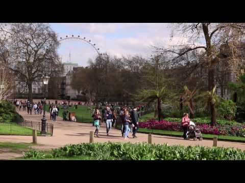 30 minute ambient city sound for concentration and meditation - St James's Park London