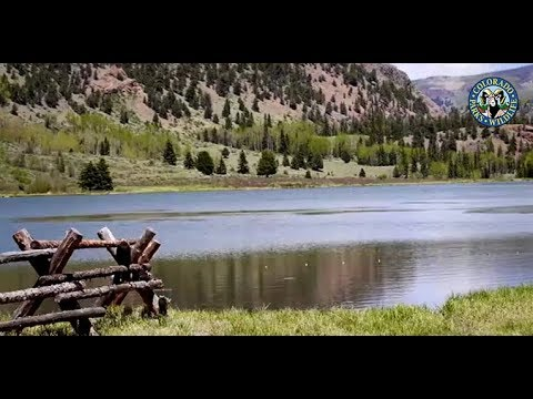 Panning for Gold: Collecting Spawn from Colorado