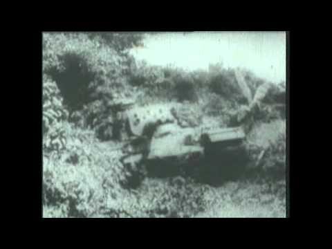 Du kích Củ Chi (Cu Chi Guerrilla)