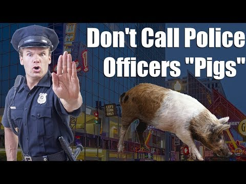 """Don't Call Police Officers """"Pigs"""""""