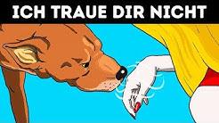 Wissenschaft bestätigt: Hunde erkennen eine schlechte Person