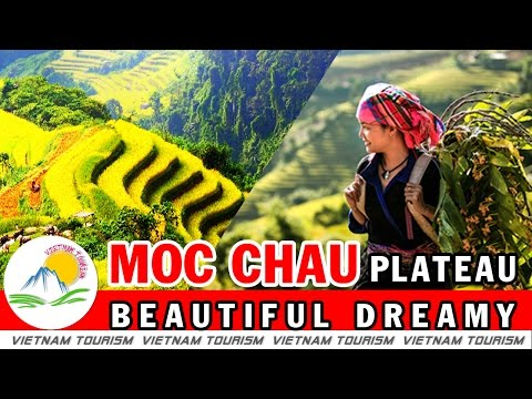 Vietnam tourism - Moc Chau Plateau - Beautiful Dreamy