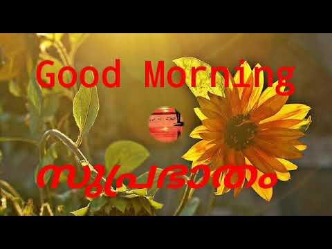 Beautiful Malayalam Good Morning Wishes Greetings Ecards Quotes