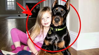 This family adopted a DOBERMAN from the shelter, and after 5 days, the parents heard a SCREAM