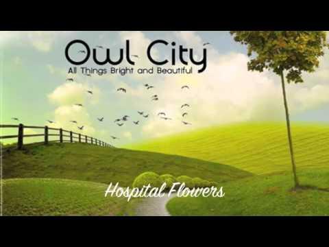 Owl City Hospital Flowers