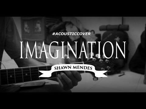 Shawn Mendes - Imagination [Acoustic Cover] with Lyrics