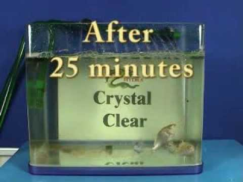 Hydra Crystal - Removes Green Water Algae In Minutes