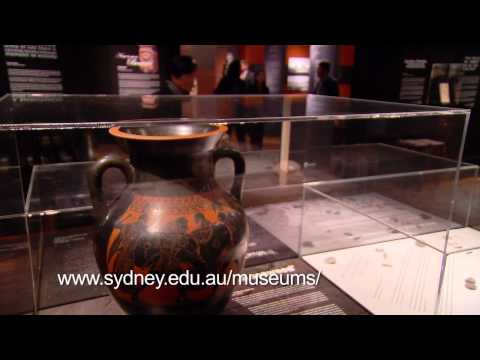 Discover the Nicholson Museum