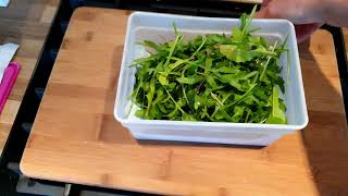How to keep home grown salad fresh once picked