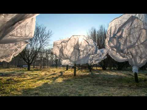 Interpretation of Christo and Jeanne - Claude