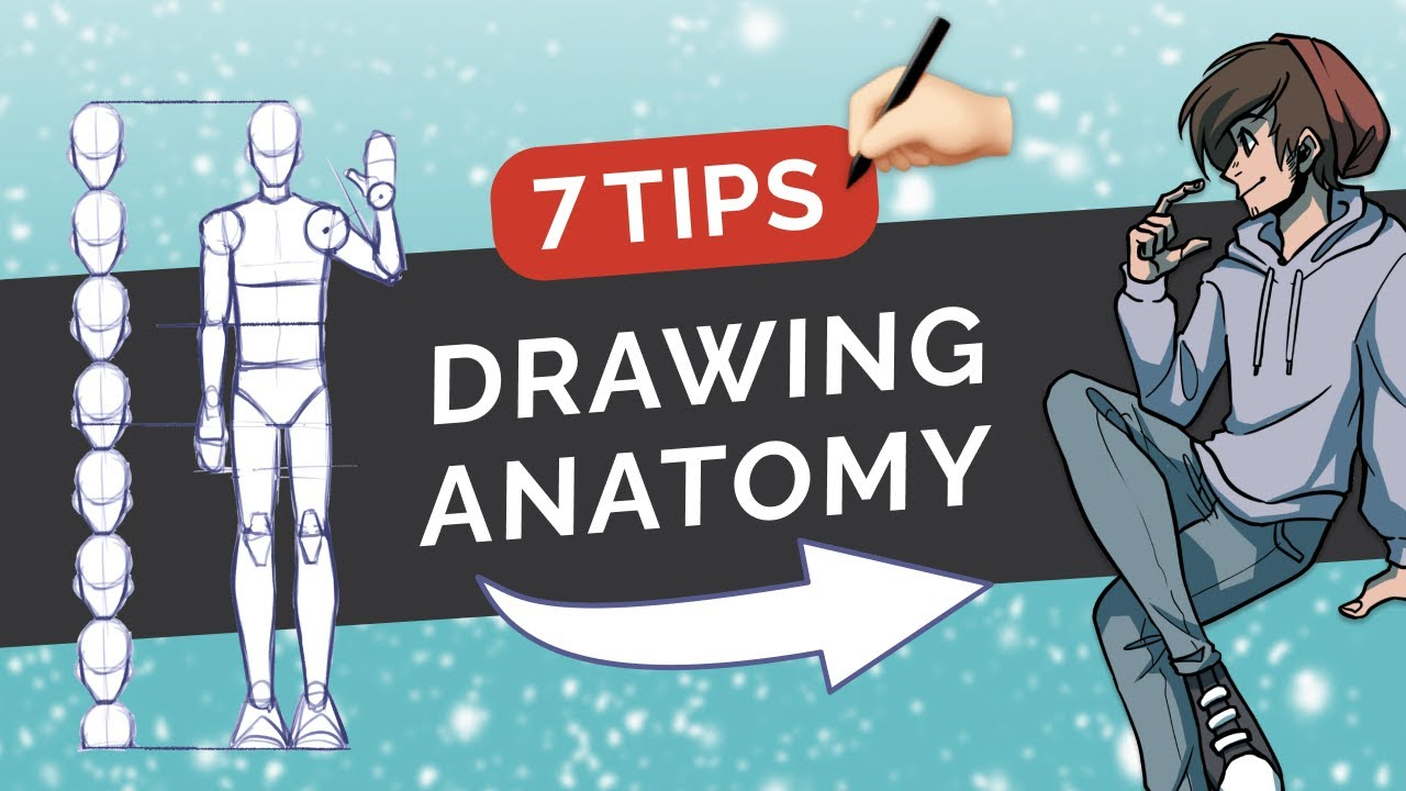 How to Draw & Stylize Human ANATOMY - 7 Tips on Body Proportions - Digital Art Tutorial (MediBang)