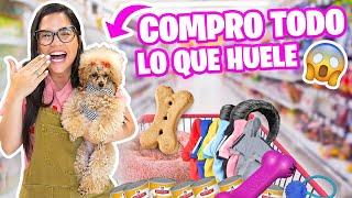 COMPRO TODO LO QUE MI PERRO TOCA EN LA TIENDA 😱 Mi Princesa Miniatura Marie 😅 El Mundo de Camila