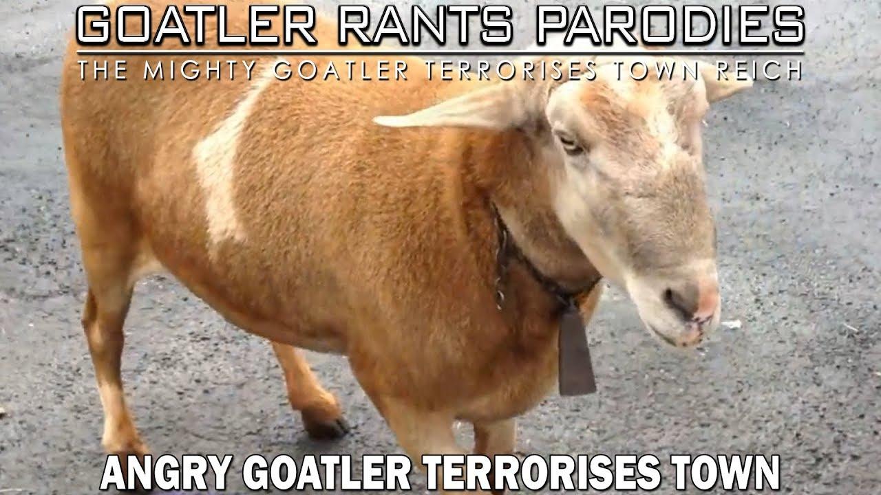 Angry Goatler Terrorises Town
