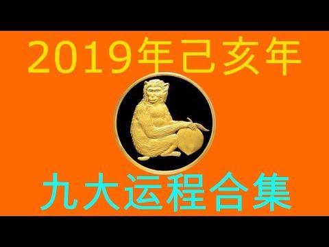 2019年己亥年九大运程大合集:肖猴者