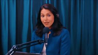 Jimmy Dore REJECTED By Tulsi Gabbard With Offer To Abandon Dem Party & Form New Third Party