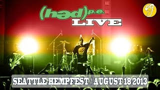 (hed) p.e. Live at Seattle Hempfest [August 18, 2013]