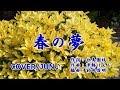 【新曲】'18/10/31発売「歌の神さま」C/W曲『春の夢』松永ひとみ カバー/じゅん