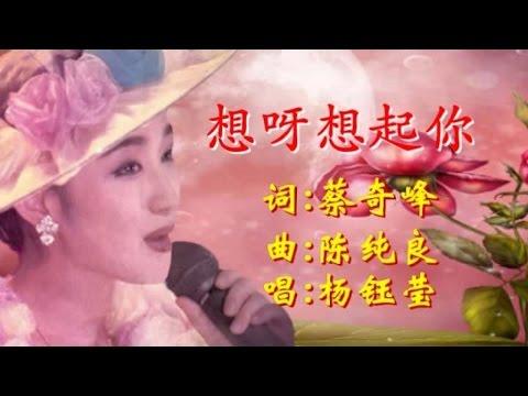 杨钰莹 - 想呀想起你(Karaoke Version)