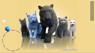 Симулятор кота ^_^