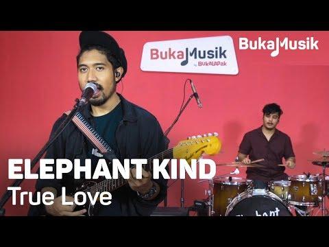 Elephant Kind - True Love (with Lyrics) | BukaMusik