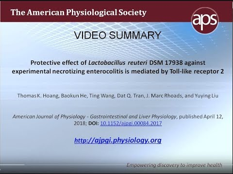 American Journal of Physiology-Gastrointestinal and Liver