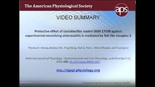 Effect of Lactobacillus reuteri is mediated by TLR2 – Hoang et al. (2018)