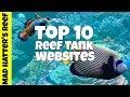 Top 10 Reef Tank Websites