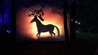 Фестиваль Вдохновение 2017 в Останкино - 3 международный фестиваль искусств, световые инсталляции