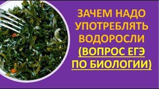 14. Зачем надо употреблять водоросли (вопрос ЕГЭ по биологии)