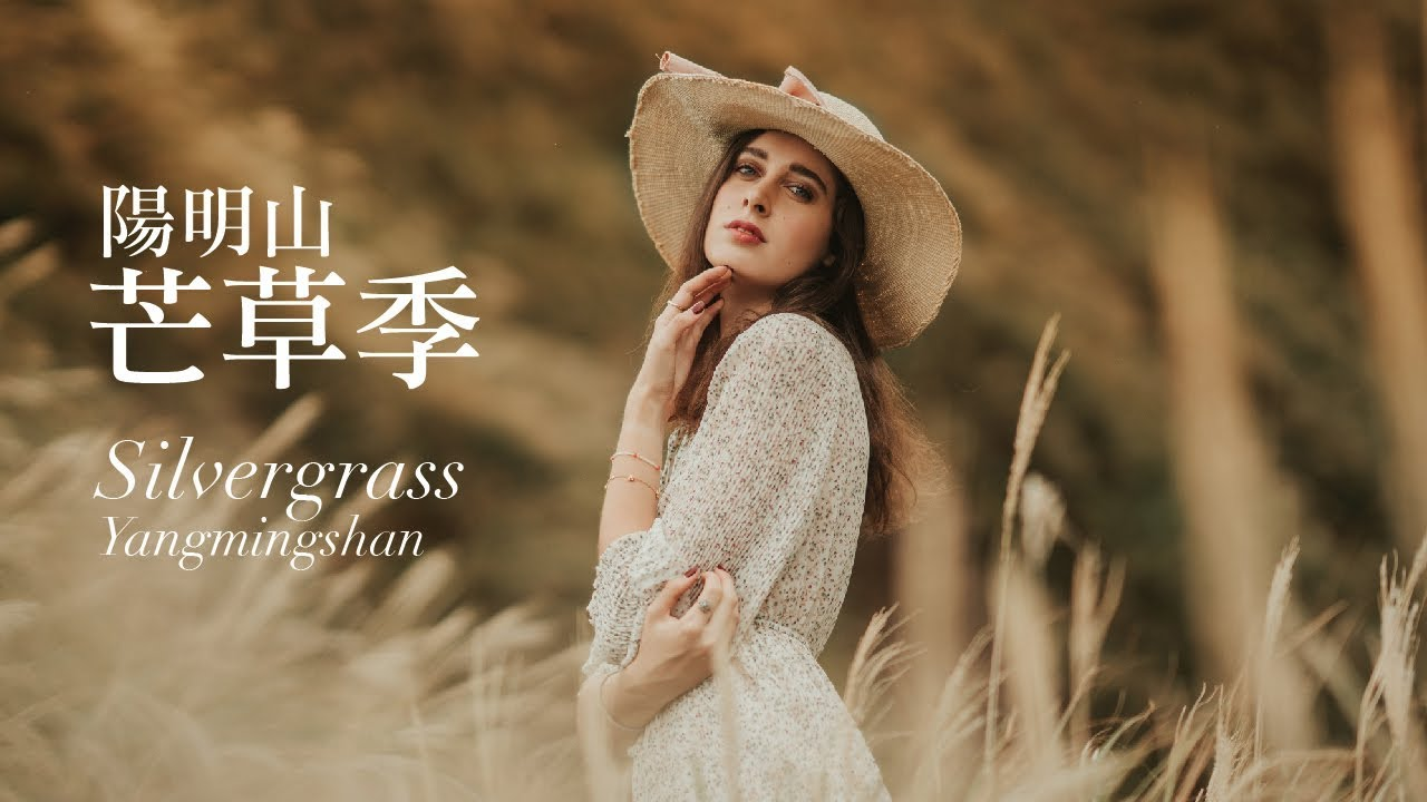 【廢片系列10 】 陽明山芒草季| 拍攝人像 | Silvergrass  Yangmingshan National Park feat.浪漫life