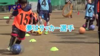 FC小田原サッカースクール 《新規入会キャンペーン》 ☆サッカーを通し...