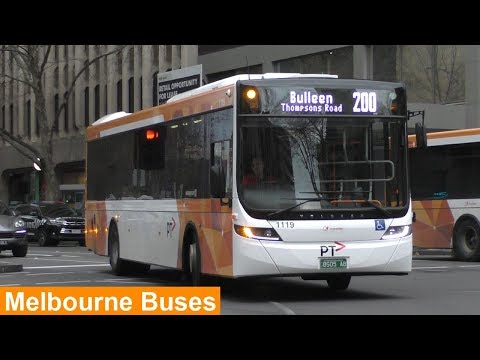 Buses In Melbourne City (Lonsdale Street) During Peak Hour - Melbourne Transport