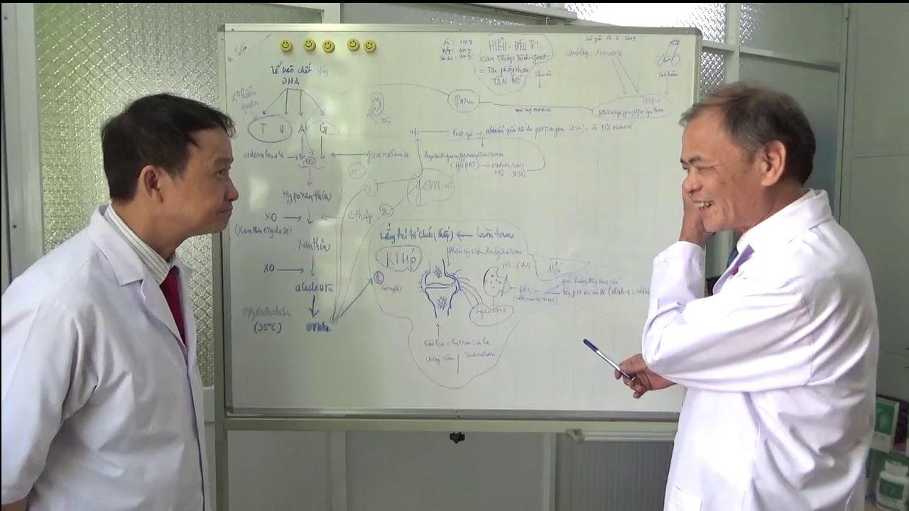 Quá trình chuyển hóa acid uric và điều trị bệnh gout