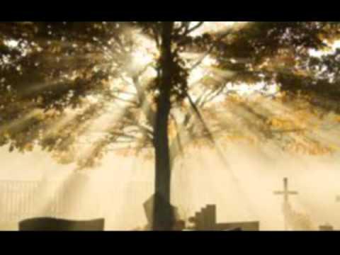 Beerdigung von unseren geliebten Mann, Bruder, Schwager und Onkel Frank