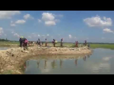 16 Oct 2017. Thousands of Rohingya coming in Bangladesh from Burma.They're saving their life by army
