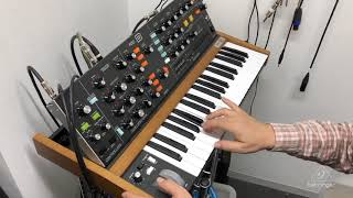 Relay Play Behringer Synthesizers, the first touch on POLY D