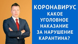Коронавирус - Какое уголовное наказание за нарушение карантина - Адвокат в Москве