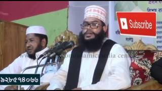 নতুন সাইদি  কণ্ঠ একেবারে সাইদির মতই abdul mojid  NEW tafsir mahfil