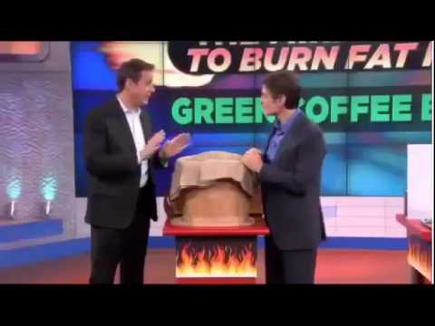 Dr  Oz Endorses Green Coffee Bean Extract Diet