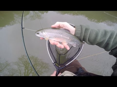 Elk River Trout Fishing Tennessee USA