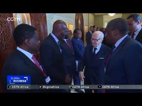 Tunisia boosts economic cooperation with sub-Saharan Africa