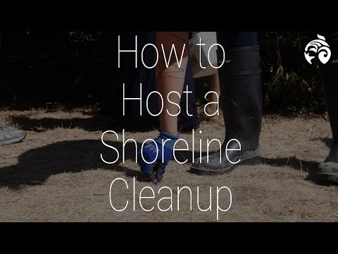 How to Host a Shoreline Cleanup | Ocean Wise